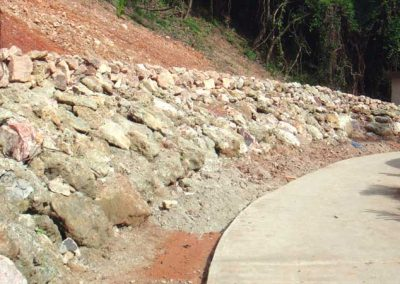 800Likuliku Island Resort catcher wall 006